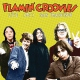 Flamin´ Groovies Vinyl Live 1971 San Francisco